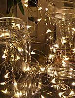abordables -1m Guirlandes Lumineuses 10 LED Blanc Chaud Décorative Alimenté par Port USB 1 set