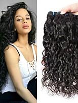 Недорогие -3 Связки Бразильские волосы Малазийские волосы Волнистые 8A Натуральные волосы Необработанные натуральные волосы Подарки Косплей Костюмы Головные уборы 8-28 дюймовый Естественный цвет