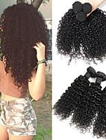 Недорогие -3 Связки Бразильские волосы / Перуанские волосы Кудрявый / Kinky Curly Натуральные волосы / Необработанные натуральные волосы Подарки / Фотография / Человека ткет Волосы 8-28 дюймовый
