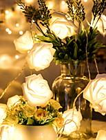 abordables -1m Guirlandes Lumineuses 10 LED Blanc Chaud Décorative Piles AA alimentées 1 set