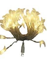 Недорогие -6м Гирлянды 40 светодиоды ДИП светодиоды Тёплый белый / Разные цвета USB / Декоративная Работает от USB 1шт