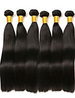Недорогие -6 Связок Малазийские волосы Прямой Натуральные волосы Человека ткет Волосы / Пучок волос / One Pack Solution 8-28 дюймовый Нейтральный Естественный цвет Ткет человеческих волос