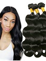 Недорогие -3 Связки Бразильские волосы Малазийские волосы Естественные кудри 8A Натуральные волосы Необработанные натуральные волосы Подарки Косплей Костюмы Головные уборы 8-28 дюймовый Естественный цвет
