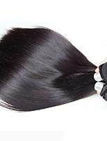 abordables -Lot de 6 Cheveux Brésiliens Cheveux Péruviens Droit 8A Cheveux Naturel humain Cheveux humains Naturels Non Traités Cadeaux Costumes Cosplay Casque 8-28 pouce Couleur naturelle Tissages de cheveux