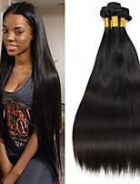 Недорогие -3 Связки Индийские волосы Прямой 8A Натуральные волосы Необработанные натуральные волосы Подарки Косплей Костюмы Головные уборы 8-28 дюймовый Естественный цвет Ткет человеческих волос