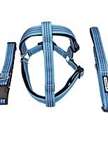 billiga -Hund Halsband / Selar / Koppel Reflekterande / Justerbara / Infällbar / Bärbar Klassisk / Brittisk Nylon / Metall Blå