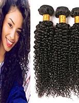 Недорогие -3 Связки Бразильские волосы Перуанские волосы Kinky Curly 8A Натуральные волосы Необработанные натуральные волосы Подарки Косплей Костюмы Головные уборы 8-28 дюймовый Естественный цвет