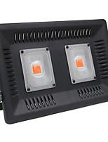 Недорогие -1шт 100 W 4000-4500 lm lm 2 Светодиодные бусины Полного спектра Растущие светильники 85-265 V