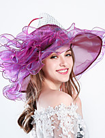cheap -Queen Elizabeth Audrey Hepburn Retro Vintage Kentucky Derby Hat Fascinator Hat Women's Organza Costume Hat Golden / Purple / Orange Vintage Cosplay Party Party Evening