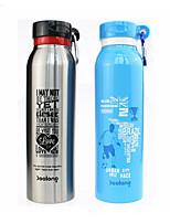 Недорогие -Drinkware Бутылки для воды / Бутылка спорта / Вакуумный Кубок Сталь + Пластик / Нержавеющая сталь / Полипропилен + ABS Компактность / сохраняющий тепло Школьная одежда / спорт
