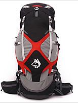Недорогие -Jungle King 65 L Заплечный рюкзак - Воздухопроницаемость, Пригодно для носки На открытом воздухе Пешеходный туризм Нейлон Черный, Зеленый, Синий