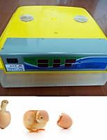 abordables -Factory OEM Nouveautés 48 Automatic Egg Incubator pour Cour Affichage de la Température / Indicateur LED / Incubateurs numériques 220 V / 110 V