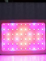 Недорогие -1 комплект 600 W 6000 lm lm 60 Светодиодные бусины Полного спектра Растущие светильники Тёплый белый / Белый / Красный 85-265 V Деловой / Дом / офис