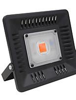 Недорогие -1шт 50 W 2000-2500 lm lm 1 Светодиодные бусины Полного спектра Растущие светильники 85-265 V
