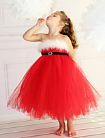 Недорогие -Дети Дети (1-4 лет) Девочки Активный Милая Однотонный Сетка Без рукавов Средней длины Платье Красный