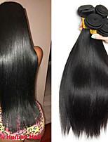 Недорогие -4 Связки Бразильские волосы Перуанские волосы Прямой Не подвергавшиеся окрашиванию человеческие волосы Remy Подарки Косплей Костюмы Человека ткет Волосы 8-28 дюймовый Естественный цвет / Без запаха