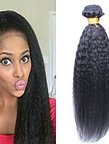 Недорогие -6 Связок Бразильские волосы Евро-Азиатские волосы Естественные прямые 8A Натуральные волосы Необработанные натуральные волосы Подарки Косплей Костюмы Головные уборы 8-28 дюймовый Естественный цвет