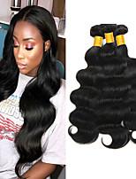 Недорогие -6 Связок Бразильские волосы Малазийские волосы Естественные кудри 8A Натуральные волосы Необработанные натуральные волосы Подарки Косплей Костюмы Головные уборы 8-28 дюймовый Естественный цвет