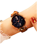 Недорогие -Жен. Наручные часы Кварцевый Черный / Красный / Коричневый Защита от влаги Новый дизайн Аналоговый Дамы На каждый день Мода - Красный Зеленый Розовый