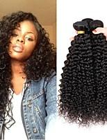 Недорогие -3 Связки Перуанские волосы Kinky Curly Натуральные волосы Wig Accessories Человека ткет Волосы Уход за волосами 8-28 дюймовый Естественный цвет Ткет человеческих волос Машинное плетение
