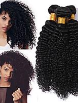 Недорогие -4 Связки Бразильские волосы Малазийские волосы Kinky Curly 8A Натуральные волосы Необработанные натуральные волосы Подарки Косплей Костюмы Головные уборы 8-28 дюймовый Черный Естественный цвет
