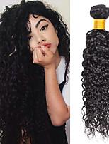 Недорогие -4 Связки Бразильские волосы Малазийские волосы Волнистые Не подвергавшиеся окрашиванию человеческие волосы Remy Подарки Косплей Костюмы Человека ткет Волосы 8-28 дюймовый Естественный цвет