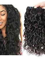 Недорогие -3 Связки Бразильские волосы Индийские волосы Волнистые Не подвергавшиеся окрашиванию Натуральные волосы Подарки Косплей Костюмы Головные уборы 8-28 дюймовый Естественный цвет Ткет человеческих волос