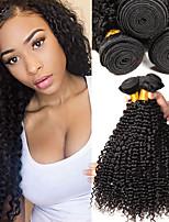Недорогие -4 Связки Бразильские волосы Евро-Азиатские волосы Kinky Curly 8A Натуральные волосы Необработанные натуральные волосы Подарки Косплей Костюмы Головные уборы 8-28 дюймовый Черный Естественный цвет