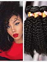 Недорогие -3 Связки Бразильские волосы Kinky Curly 8A Натуральные волосы Необработанные натуральные волосы Подарки Фотография Косплей Костюмы 8-28 дюймовый Естественный цвет Ткет человеческих волос