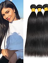 Недорогие -3 Связки Малазийские волосы Прямой 8A Натуральные волосы Необработанные натуральные волосы Подарки Косплей Костюмы Головные уборы 8-28 дюймовый Естественный цвет Ткет человеческих волос