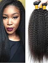 Недорогие -3 Связки Бразильские волосы Малазийские волосы Вытянутые Не подвергавшиеся окрашиванию человеческие волосы Remy Подарки Косплей Костюмы Человека ткет Волосы 8-28 дюймовый Естественный цвет
