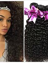 Недорогие -4 Связки Бразильские волосы Перуанские волосы Kinky Curly Натуральные волосы Необработанные натуральные волосы Подарки Косплей Костюмы Головные уборы 8-28 дюймовый Естественный цвет
