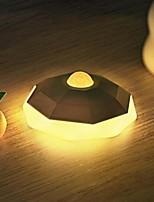 Недорогие -1шт LED Night Light Тёплый белый DC Powered обожаемый 5 V