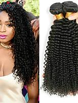 Недорогие -3 Связки Бразильские волосы Малазийские волосы Kinky Curly Натуральные волосы Необработанные натуральные волосы Подарки Косплей Костюмы Головные уборы 8-28 дюймовый Естественный цвет