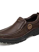 Недорогие -Муж. Кожаные ботинки Наппа Leather Весна лето / Наступила зима Спортивные / На каждый день Мокасины и Свитер Для пешеходного туризма / Для прогулок Нескользкий Черный / Темно-коричневый