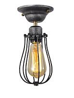Недорогие -OYLYW Потолочные светильники Рассеянное освещение Окрашенные отделки Металл Мини 110-120Вольт / 220-240Вольт