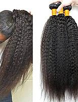 Недорогие -3 Связки Бразильские волосы Перуанские волосы Вытянутые Натуральные волосы Необработанные натуральные волосы Подарки Косплей Костюмы Человека ткет Волосы 8-28 дюймовый Естественный цвет