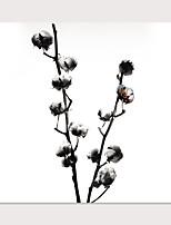 Недорогие -С картинкой Отпечатки на холсте - Фото Цветочные мотивы / ботанический Modern