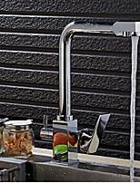 Недорогие -кухонный смеситель - Две ручки одно отверстие Электропокрытие Стандартный Носик Другое Обычные Kitchen Taps