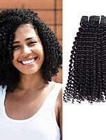 Недорогие -3 Связки Бразильские волосы Индийские волосы Kinky Curly Не подвергавшиеся окрашиванию Подарки Косплей Костюмы Головные уборы 8-28 дюймовый Естественный цвет Ткет человеческих волос Машинное плетение