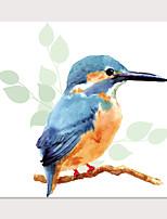 Недорогие -С картинкой Отпечатки на холсте - Животные Птицы Modern