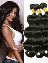 Недорогие -3 Связки Бразильские волосы Естественные кудри Не подвергавшиеся окрашиванию Подарки Косплей Костюмы Головные уборы 8-28 дюймовый Естественный цвет Ткет человеческих волос