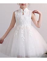 Недорогие -Дети Девочки Классический Однотонный Длинный рукав Платье Белый