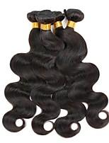 Недорогие -6 Связок Бразильские волосы Естественные кудри Не подвергавшиеся окрашиванию Подарки Головные уборы Человека ткет Волосы 8-28 дюймовый Естественный цвет Ткет человеческих волос