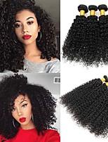 Недорогие -4 Связки Бразильские волосы Индийские волосы Кудрявый Kinky Curly Не подвергавшиеся окрашиванию Головные уборы Человека ткет Волосы Сувениры для чаепития 8-28 дюймовый Черный Естественный цвет