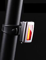 Недорогие -- Велосипедные фары Лампа Задняя подсветка на велосипед LED Горные велосипеды Велоспорт Портативные Прочный Литий-ионная аккумуляторная батарея 200 lm Встроенная литий-батарея Красный / АБС-пластик