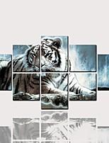 Недорогие -С картинкой Роликовые холсты - Животные Модерн Классика Modern