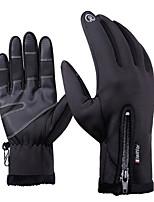 Недорогие -Полныйпалец Универсальные Мотоцикл перчатки Фланель Сенсорный экран / Сохраняет тепло