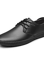 Недорогие -Муж. Комфортная обувь Микроволокно Наступила зима Туфли на шнуровке Черный / Коричневый