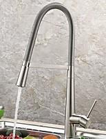 Недорогие -кухонный смеситель - Одной ручкой одно отверстие Стандартный Носик Другое Современный Kitchen Taps
